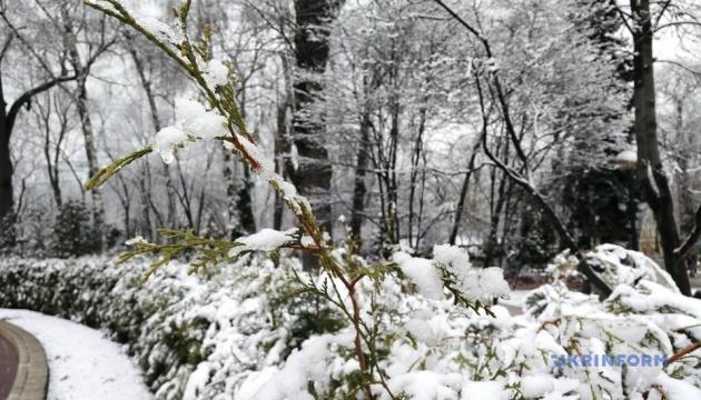 У Києві випав весняний сніг