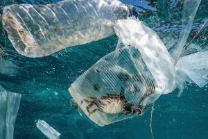 G20 готова узгодити договір про боротьбу із забрудненням морів