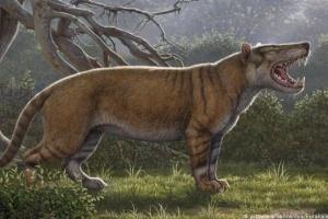 Массивные клыки и вес полторы тонны: в Кении открыли гигантского предка львов