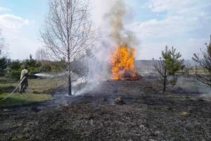 В Черниговской области горят 15 гектаров леса