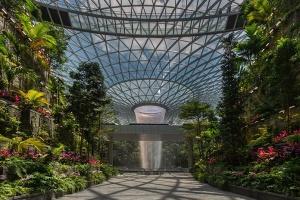 В аеропорту Сінгапуру з'явився найбільший в світі критий водоспад