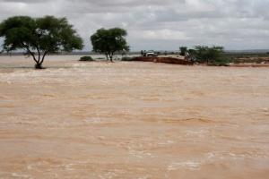 У Південній Африці через повені загинули півсотні людей