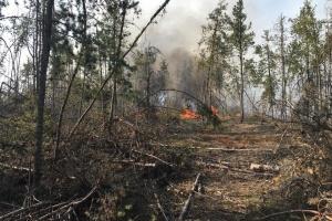 Warnung vor extremer Brandgefahr in Regionen der Ukraine