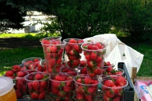 На ринках Чернівців з'явилась перша буковинська полуниця