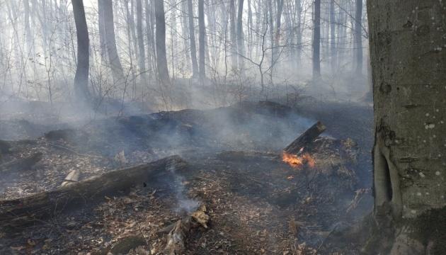 На Закарпатті вигоріло 35 гектарів лісу