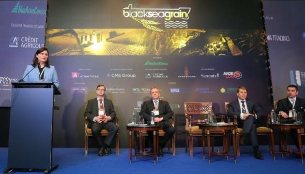 Зерновий ринок визначає темпи розвитку економіки України - Мінагро