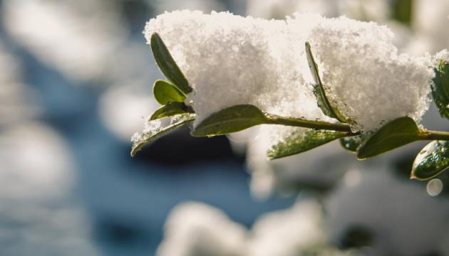 Мокрый снег, грозы и шквальный ветер - в Украину идет похолодание