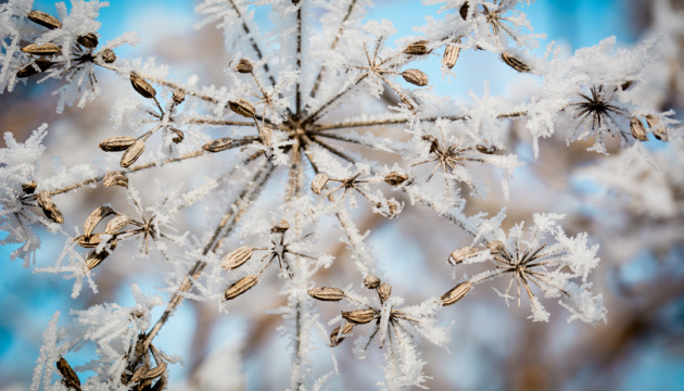 Синоптики обіцяють штормовий вітер і мороз