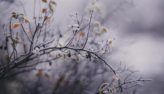Як не дощі, то заморозки - синоптики поки не обіцяють бабиного літа