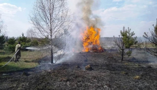 На Чернігівщині горить 15 гектарів лісу