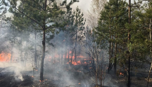 Extreme level of fire hazard remains in nine regions of Ukraine