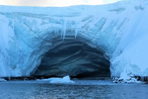Масштабы загрязнения пластиком надо исследовать в Антарктике - эксперт