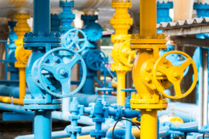 Ukraine's gas stocks in storage facilities grow by 20%