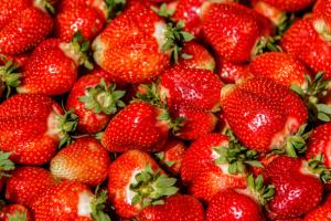 На Житомирщині відбудеться перший фестиваль полуниці