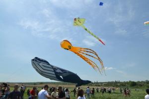 Как в Ольшанской тергромаде отмечали фестиваль воздушных змеев