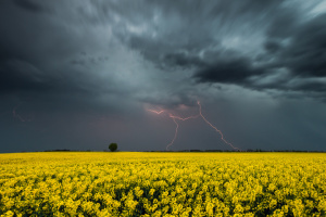 Weather forecasters warn of thunderstorms in Ukrainian regions