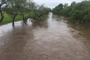 Негода пошкодила мости на Закарпатті, підтоплені сотні гектарів землі