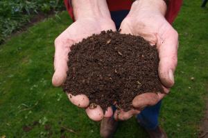 В штате Вашингтон разрешили делать компост из человеческих останков