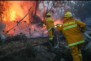 ЄС направив до Ізраїлю спецлітаки для боротьби з пожежами