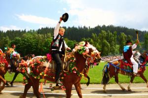В горах Буковины устроят праздник выхода на полонины