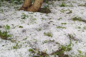 Харьков накрыло дождями с градом