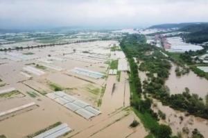 Майский паводок нанес Закарпатью убытков на 150 миллионов