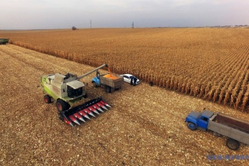 Ukrainian farmers harvest grain and leguminous crops from 91% of area