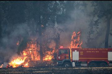 Brandgefahr in Regionen der Ukraine