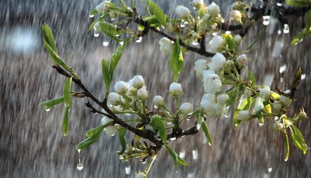 Україні прогнозують дощові вихідні із грозами та до +19°