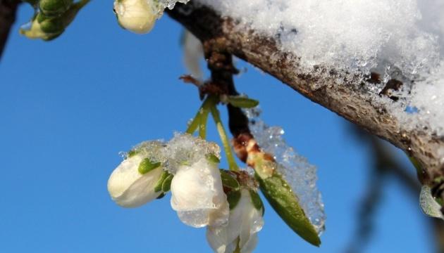 Синоптики предупреждают о сильных дождях и заморозках