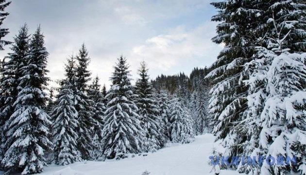 Karpaten mit Schnee verschüttet