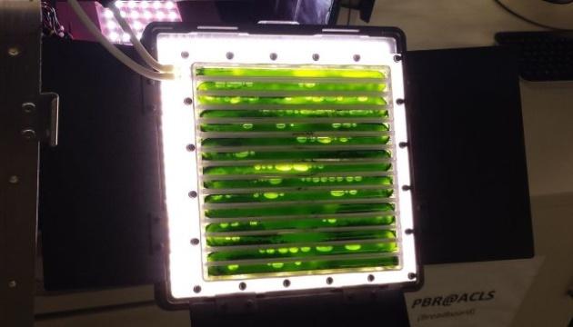На МКС випробовують біореактор, який виробляє їжу та кисень