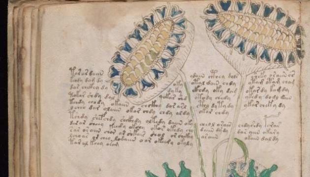 У Британії розшифрували загадковий рукопис Войнича