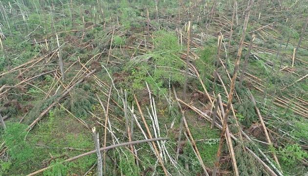 Последствия урагана в Житомирской области признали чрезвычайной ситуацией