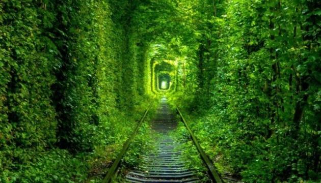 «Тунель кохання» на Рівненщині відкриває новий туристичний сезон