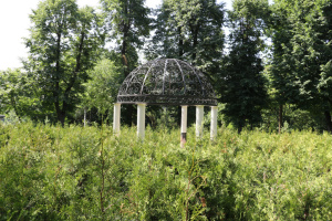 Перший зелений лабіринт Житомирщини готують до відкриття