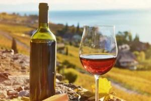 """Росспоживнагляд """"раптом"""" виявив погіршення якості грузинського вина"""
