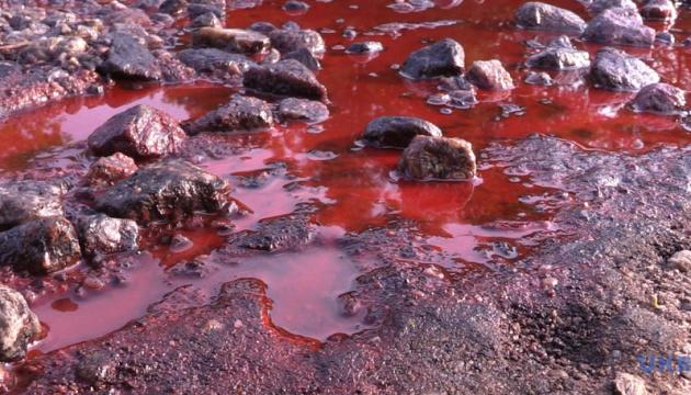Небезпечних інсектицидів у річці Рось не знайшли