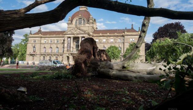 В центре Страсбурга ураган повалил столетние буки