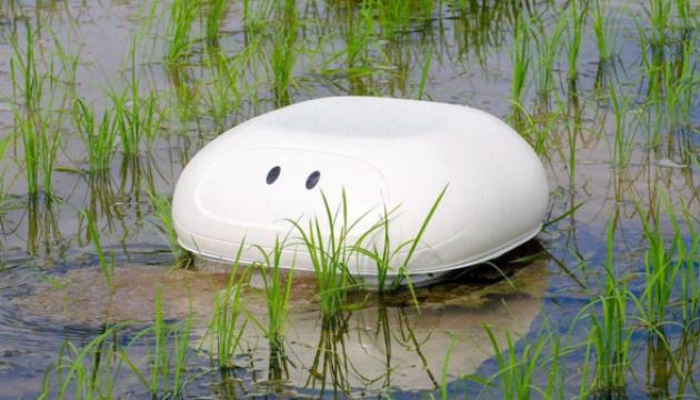 У Японії створили робота-качку, який працюватиме на рисових полях
