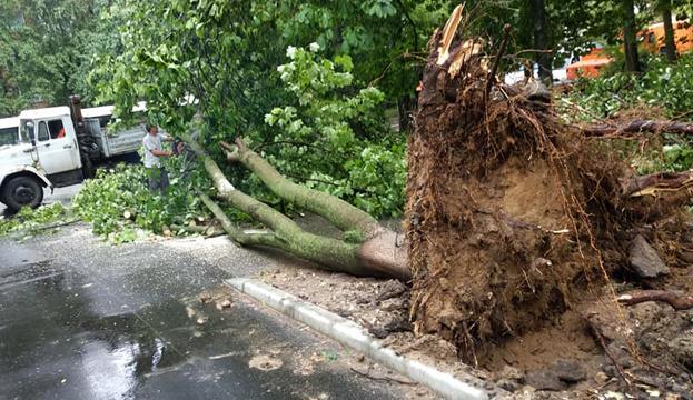 В Кропивницком пострадавшим от урагана выплатили более 400 тысяч