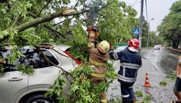 Bad weather leaves 211 towns and villages in Ukraine without electricity