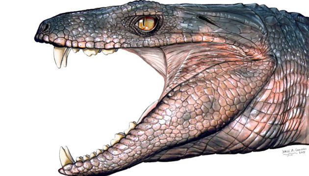 Деякі предки крокодилів могли бути травоїдними