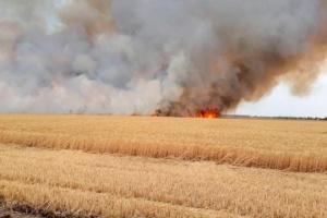 In Oblast Charkiw 23 Hektar Weizen ausgebrannt