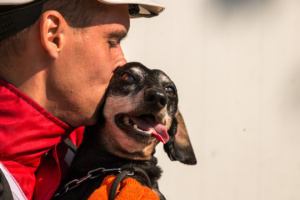 Ukrainian search and rescue dogs enter world's top 100. Photos