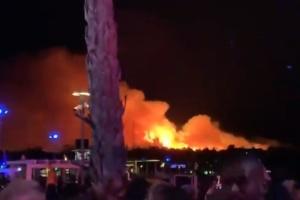 В Хорватии из-за лесного пожара с фестиваля эвакуировали тысячи людей