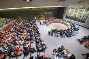 国連安保理、ウクライナの言語法を協議