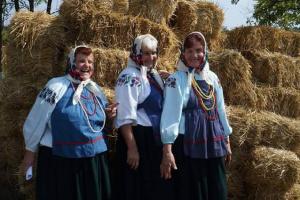 На Вінниччині унікальний нагрудник визнали об'єктом культурної спадщини