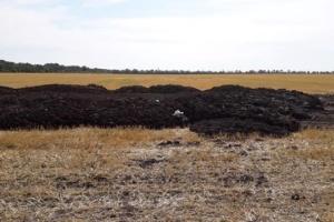 Смрад в Кропивницком: мэр собрал экстренное совещание