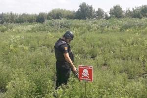 """На территории КПВВ """"Майорское"""" нашли 12 взрывоопасных предметов"""